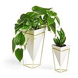 Umbra Trigg Desktop Planter Vase & Geometric...