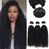 Brazilian Human Hair Bundles Kinky Curly Virgin Hair Bundles Wet and Wavy Bundles Remy Human Hair Extensions Same Direction Cuticle Natural Color (12 14 16 inch)
