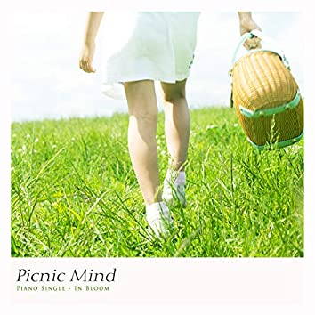 A picnic in the mind