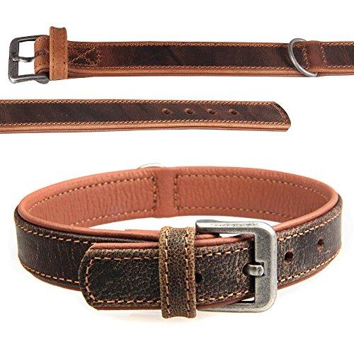 Kamelleder Halsband Hundehalsband hell / braun 5 Jahre Garantie Warmes, fein strukturiertes Kamelleder Mit Nappa-Softleder weich unterfüttert