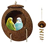 NatureBuz Handmade Coconut Shell Bird House Nest and Bamboo Wood Ladder Perch Plastic and Metal Free Parrot Parakeet Dove Hamster Mice Budgie