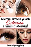 Micromi Brows eyelash extension training