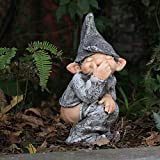 Auleset Gartendekoration Outdoor Puppe ungewöhnlich Ornament lustig Pooping Zwerg frech Zwerg