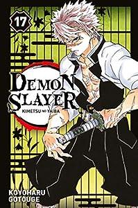 Demon Slayer Edition simple Tome 17