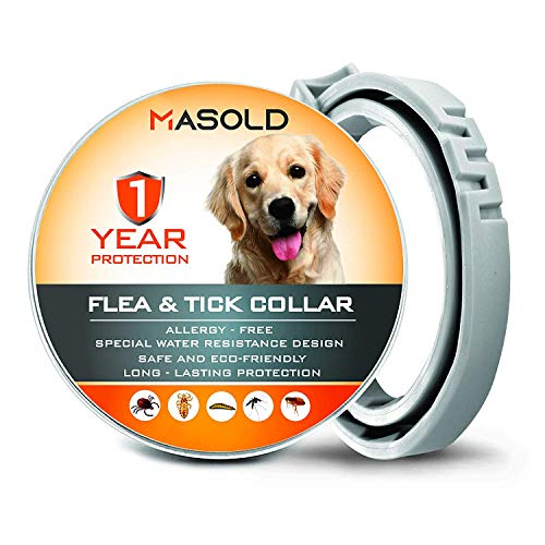 MASOLD Dog Flea and Tick Control Collar - 12 Months Flea and Tick Control for Dogs - Natural, Herbal, Non-Toxic Dog Flea Treatment - Adjustable [Upgrade Version]