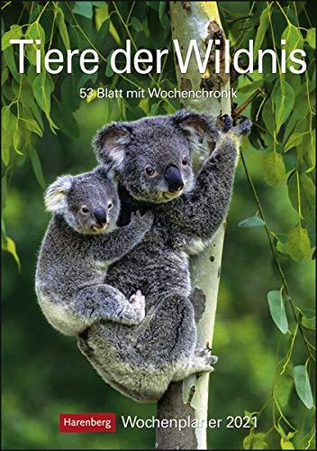 Tiere der Wildnis Kalender 2021: Wochenplaner, 53 Blatt mit Wochenchronik