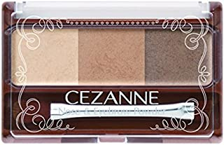 Japan Health and Beauty - Cezanne nose & Eyebrow Powder 02 *AF27*