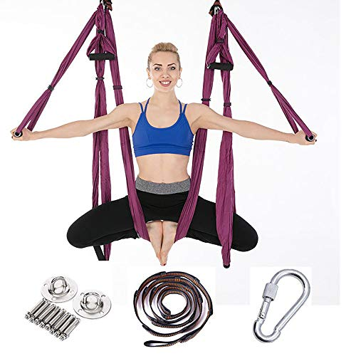 Trapeze Yoga Kit, Inversion Swing for Beginners & Kids & Adults, Antigravity Ceiling Hanging Yoga Sling, Yoga Sling/Inversion Tool, Aerial Yoga Swing Kit,Purple