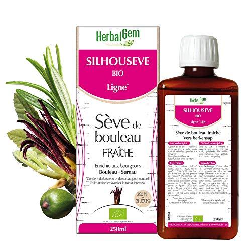 Herbalgem - Silhousève - Sève de Bouleau Fraîche Enrichie aux Bourgeons - Recette Traditionnelle - 250 ml