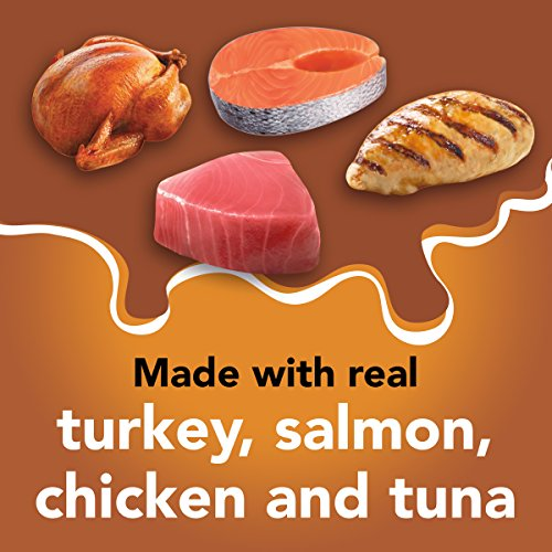 Cat   Purina Friskies Pate Wet Cat Food Variety Pack, Extra Gravy Pate Chicken, Turkey, Salmon & Tuna – (24) 5.5 oz. Cans, Gym exercise ab workouts - shap2.com