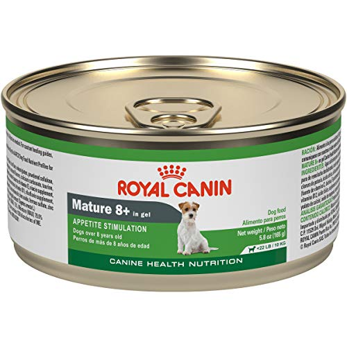 Royal Canin Canine Health Nutrition Mature 8+ In Gel Canned Dog Food, 5.8 oz Can (Case of 24)