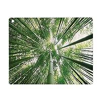 iPad 8 ケース 2020 iPad 10.2 ケース 第7世代 2019 竹の装飾熱帯雨林グローブの背の高い竹の木エキゾチックなアジアの自然禅の装飾スタイル画像緑 軽量 傷防止 オートスリープ ウェイク スマートケース iPad 10.2インチ ハードカバー