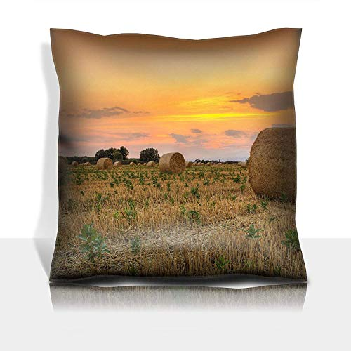 ZMYGH Throw Pillowcase Cotton Satin Comfortable Decorative Soft Pillow Covers Protector Sofa 18x18 1 Pack Hay Bale at Sunset in Hungary This Photo Was Created HDR Tech