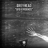 UFO Evidence