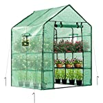 Vivosun 57x57x77-inch mini walk in green house with window and anchor plant garden hot house 2 tiers 8 shelves 8 multi-shelves, large space- crafted with 8 wired shelves, overall dimension:57x57x77-inch, our vivosun green house is large enough for starting seed, sprouting young plants, blooming flowers and cultivating fresh vegetables; 3 tiers and different height between each shelf provide a possibility to grow both small and large plants side by side roll-up entrance & windows- zippered roll-up entrance at the front provides an easily access to the greenhouse and a bigger operating space; 2 side windows bring a better air circulation of the green house, even if in hot weather, your lovely plants can breath fresh air; and the custom meshes on the window effectively isolate the pests from harming plants high-quality & long life time pe cover- our vivosun greenhouse is double-stranded edge banding, making the cover more tough and more durable; thanks to the anti-cold agent added in the cover, its lifetime is 3 months more than usual cover; in addition, our high-quality pe cover can prevent the harm from uv and bad weather but offering the best solar performance, which will nourish your plants very well