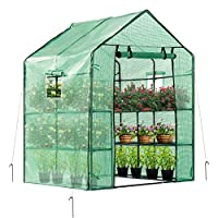 Mini Walk in Green House with Window and Anchor Plant Garden Hot House