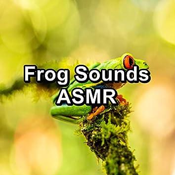 Frog Sounds ASMR