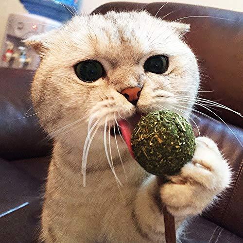 Catnip Natural Lollipop Limpieza De Dientes Juguete para Masticar Gatos De Gato Bola De Plata De La Bola Bola De Azúcar Catnip Candy Cat Kitten Catnip Jugar Relajante Catnip Toys Promueve