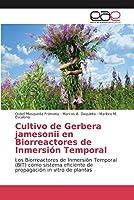Cultivo de Gerbera jamesonii en Biorreactores de Inmersión Temporal