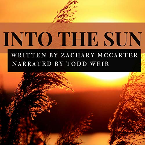Into the Sun audiobook cover art