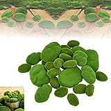 JUNMEIDO 30 pcs Musgo Artificial Decoracion Piedras de Musgo Verde Rocas de Musgo con 3 Diferentes Tamaño Musgo Artificial Manualidades para Arreglos Florales / Jardín de Hadas / Plantas en Macetas