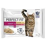 Wet Cat Food - Nutrizione avanzata per gatti adulti 1+, selezione mista carnosa in salsa, 52 sacchetti (52 x 85 g)