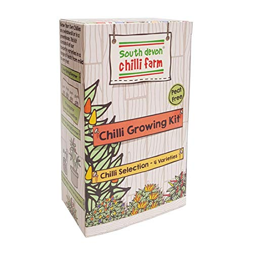 Chilli Growing Kit Chilli Set de plantation, par Les Experts de la south Devon Chilli Farm en Angleterre de Chilli, dans un coffret cadeau