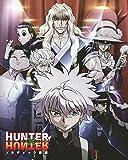Póster de anime Hunter X Hunter, tamaño 28 cm x 43 cm, 280 mm x 430 mm, acabado esmerilado, material de papel decorativo para regalo