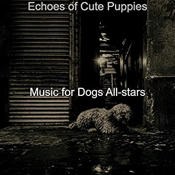 Echoes of Cute Puppies