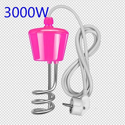 Aufblasbarer Taucherhitzer aus Edelstahl, 2000W / 2500W / 3000 W (3000W)