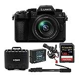 Best Panasonic Pro Cameras - Panasonic Lumix DC-G95 Mirrorless Digital Camera with 12-60mm Review