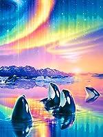 Darmeng DIY 5Dダイヤモンド絵画 オーロラクジラの風景 フルドリルキット ラウンドドリルペイント ダイヤモンドアートダイヤモンドと数字キット クラフトキャンバス ホームウォールデコレーション用 12x16インチ