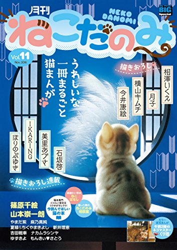 月刊ねこだのみ vol.11(2016年10月28日発売) [雑誌]の詳細を見る