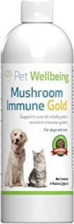 Pet Wellbeing Mushroom Immune Gold - Natural Alternative Support for Dogs with Cancer - 8oz (236ml)