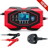 Coldspot Car Battery Charger, 12V/6A 24V/3A Smart Automatic Lead Acid Lithium Battery Charger
