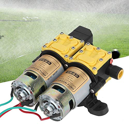 Bomba de agua de doble cabeza eléctrica de alta presión de 12...