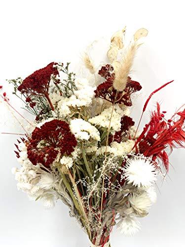 HERBINOS Trockenblumenstrauß - Strauß rot