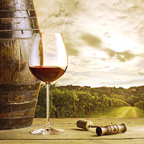 Smartbox - Caja Regalo - Vino a Domicilio: 2 Botellas de D.O. Ribera del Duero y 2 de DOCa Rioja - Ideas Regalos Originales