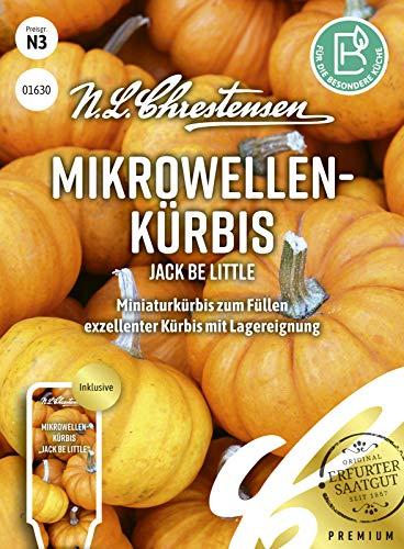 Mikrowellen- kürbis Jack Be Little Samen, Saatgut