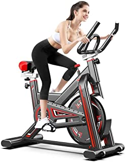 Coolbaby Silent Aerobic Training Indoor Exercise Bike with Adjustable Handlebar and Seat