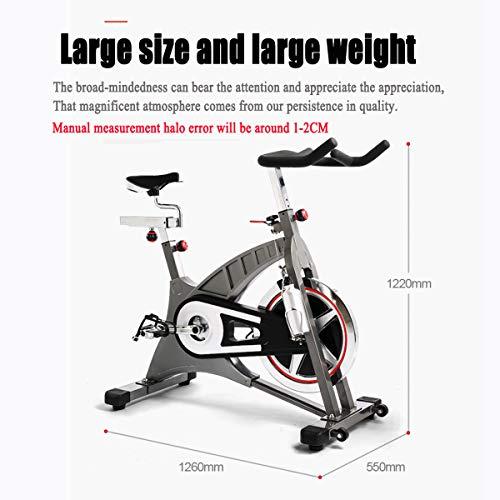 NXX Bicicleta Estática con Sensores De Pulso De Mano,Transmisión por Correa, Volante De Inercia 20Kg, Monitor LCD, Adultos Unisex