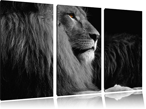 Dark wunderschöner stolzer Löwe schwarz/weiß auf 3-Teiler Leinwandbild 120x80 Bild auf Leinwand, XXL riesige Bilder fertig gerahmt mit Keilrahmen, Kunstdruck auf Wandbild mit Rahmen, gänstiger als Gemälde oder Ölbild, kein Poster oder Plakat