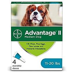 Bayer K9 Advantix II Flea Medicine