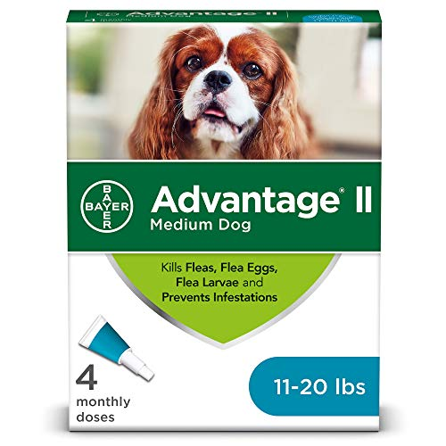 Advantage II 4Dose Medium Dog Flea Prevention Topical Flea Treatment for Dogs 1120 Pounds