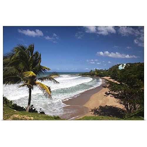 "GREATBIGCANVAS Poster Print Puerto Rico, West Coast, Rincon, Domes Beach by Walter Bibikow 36""x24"""
