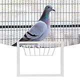 Pangding 𝐂𝐡𝐫𝐢𝐬𝐭𝐦𝐚𝐬 𝐂𝐚𝐫𝐧𝐢𝒗𝐚𝐥 Trampa en T para casa de pájaros, Puerta de casa para pájaros, Buena Estabilidad Instalación Sencilla Trampa en T de Alta Resistencia Jaulas para pájaros