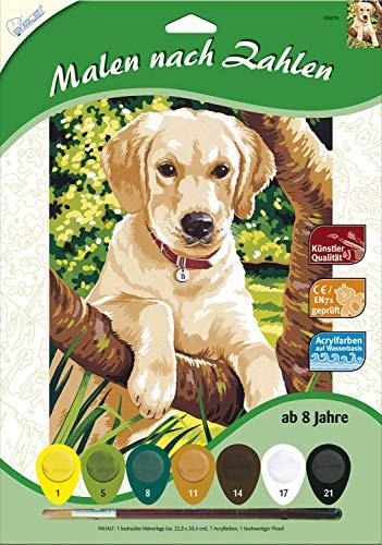 MAMMUT 105010 - Malen nach Zahlen Tiermotiv, Junger Labrador, Hund, Komplettset mit bedruckter Malvorlage im A4 Format, 7 Acrylfarben und Pinsel, Malset für Kinder ab 8 Jahre