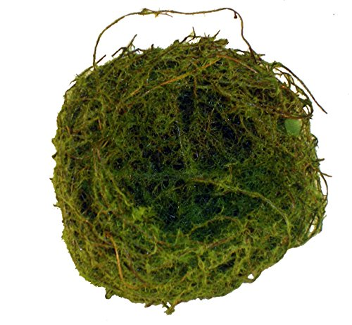 Package of 12 Lush Moss Covered Birds Nest for Weddings, Crafts, Parties and More- Package of 12