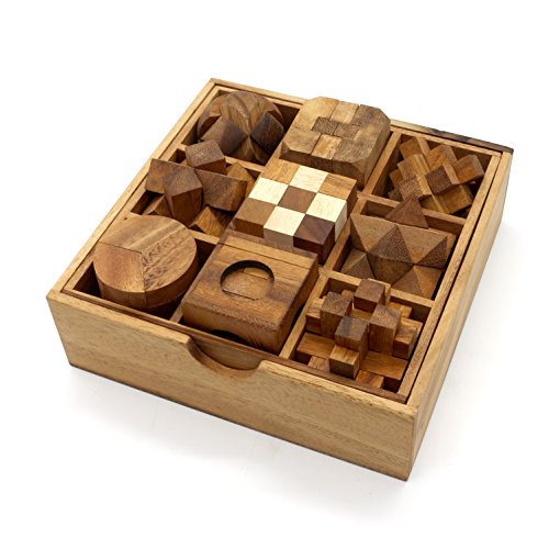 Fun Games for Adults 3D Wooden Puzzle Brain Teasers and Educational Games in Set of 9 Wooden Puzzles to Challenging Puzzles for Adults and Brain Games for Kids Suit for Living Room Decorations Table