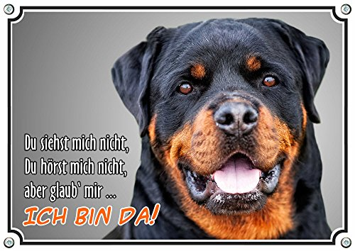 Petsigns Hundeschild - Rottweiler - stabiles Metallschild mit Fotodruck - uv beständig, DIN A4